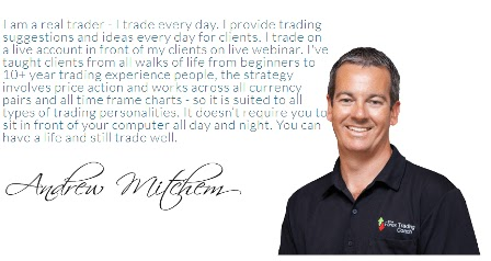 The forex trading coach