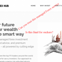managed forex hub review