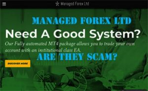 Managed forex ltd