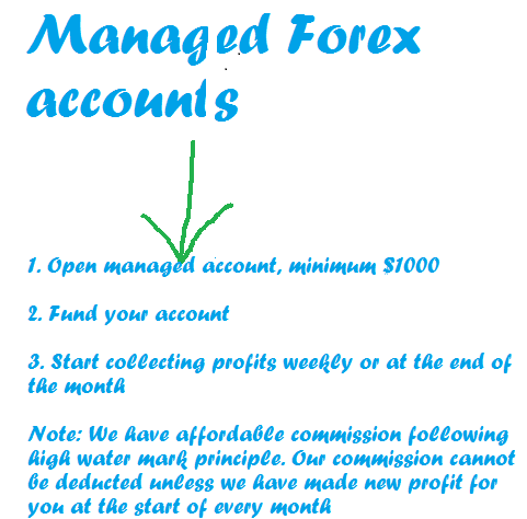 Segnali forex managed account